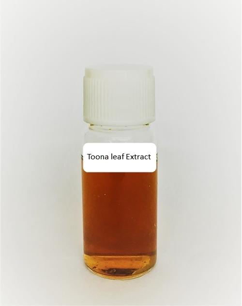 香椿超氧化物歧化酶(香椿萃取物:Toona leaf Extract) 1